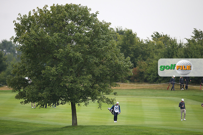 An idyllic tree on the 7th fairway during the Final Round of the BMW International Open 2014 from Golf Club Gut Lärchenhof, Pulheim, Köln, Germany. Picture:  David Lloyd / www.golffile.ie