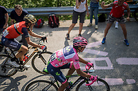 Nairo Quintana (COL/Movistar) & Vincenzo Nibali (ITA/Bahrain-Merida) up the Foza climb (1086m)<br /> <br /> Stage 20: Pordenone › Asiago (190km)<br /> 100th Giro d'Italia 2017