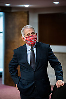 Anthony Fauci, director of the National Institute of Allergy and Infectious Diseases, wears a Washington Nationals face covering as he arrives during a Senate Health, Education, Labor and Pensions Committee hearing in Washington, D.C., U.S., on Tuesday, June 30, 2020. Top federal health officials are expected to discuss efforts to get back to work and school during the coronavirus pandemic. <br /> Credit: Al Drago / Pool via CNP /MediaPunch