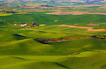 Palouse Hills Landscape Photography