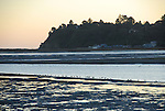 Bolinas Lagoon at low tide