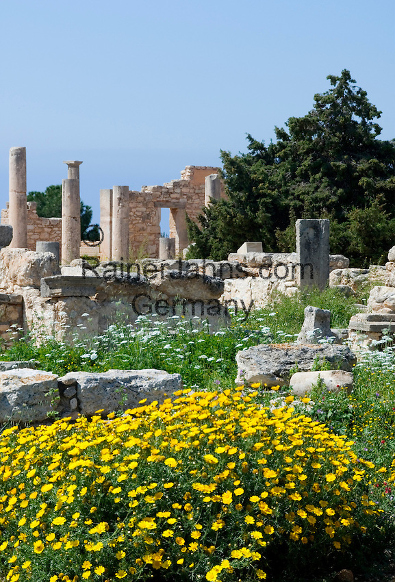 CYPRUS, near Kourion: archaelogical excavation - sanctuary of Apollo Hylates<br />