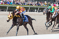 HALLANDALE BEACH, FL - JANUARY 28: Curlin's Approval ridden by Luis Saez wins the Hurricane Bertie (G3) at Gulfstream Park. (Photo by Arron Haggart/Eclipse Sportswire/Getty Images