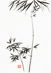 Gentle minimalistic bamboo stalk and a branch with leaves artistic oriental style illustration, Japanese Zen Sumi-e ink painting on white rice paper background