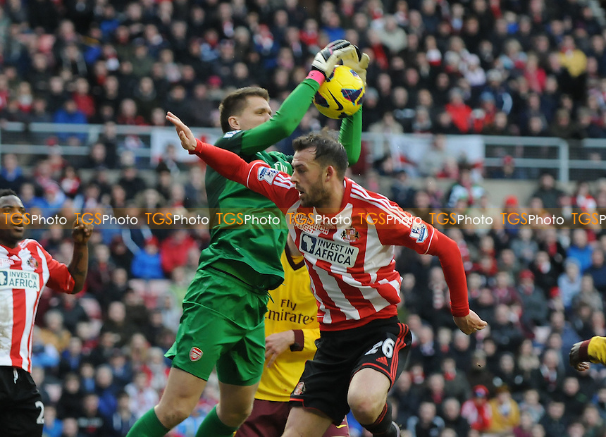 Arsenal goalkeeper Wojciech Szcz?sny catches from Steven Fletcher - Sunderland vs Arsenal - Barclays Premier League Football at The Stadium of Light, Sunderland, Tyne & Wear - 09/02/13 - MANDATORY CREDIT: Steven White/TGSPHOTO - Self billing applies where appropriate - 0845 094 6026 - contact@tgsphoto.co.uk - NO UNPAID USE.