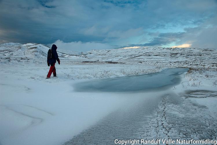 Person går langs delvis frossen bekk ved Forolsjøen. ---- Person hiking along frozen stream by Forolsjøen.