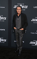 "HOLLYWOOD, CALIFORNIA - MAY 15: Ian McShane, attends the special screening of Lionsgate's ""John Wick: Chapter 3 - Parabellum"" at TCL Chinese Theatre on May 15, 2019 in Hollywood, California, USA.    <br /> CAP/MPI/FS<br /> ©FS/MPI/Capital Pictures"