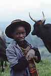 A Tutsi boy and his family's cattle .Lake Kivu, Western Rwanda.