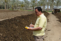 EGYPT, Bilbeis, Sekem organic farm, preparing of organic compost for desert farming, measure of temperature / AEGYPTEN, Bilbeis, Sekem Biofarm Herstellung von Kompost fuer Landwirtschaft in der Wueste, Messung der Temperatur