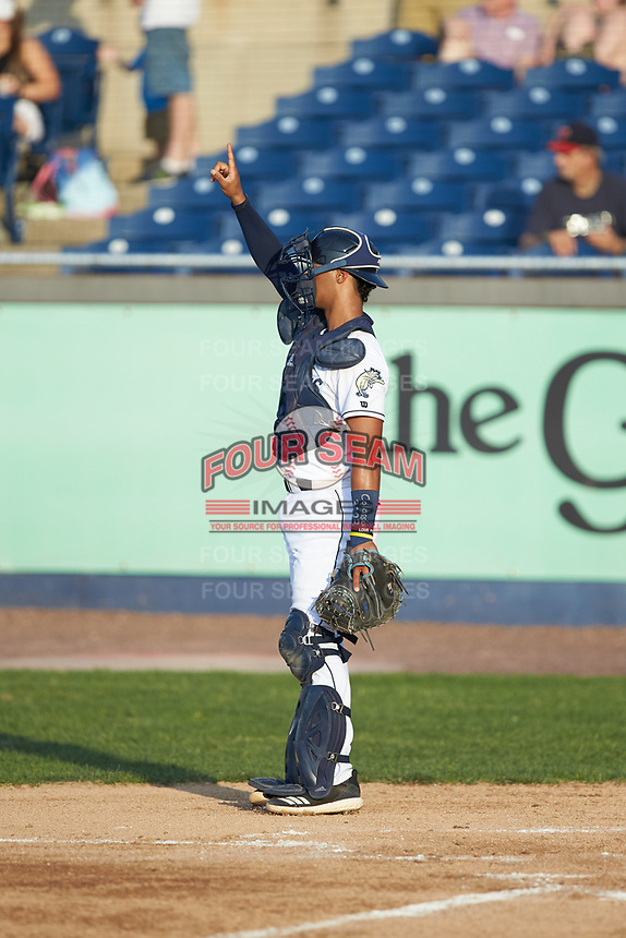 Wilmington Blue Rocks catcher MJ Melendez (7) on defense against the Fayetteville Woodpeckers at Frawley Stadium on June 6, 2019 in Wilmington, Delaware. The Woodpeckers defeated the Blue Rocks 8-1. (Brian Westerholt/Four Seam Images)