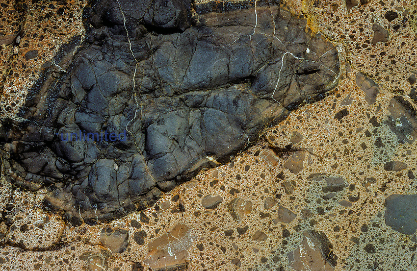 Pillow lava of basalt surrounded by volcanic breccia. Otago, New Zealand.