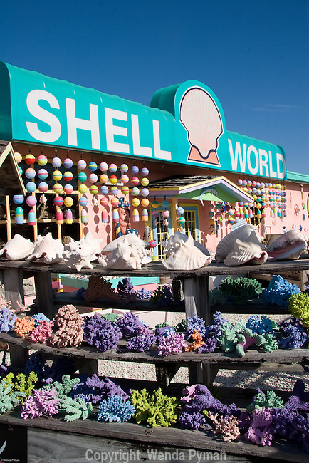 Shell World is worth a stop for everything from shells and coral to home decor.