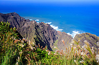 The end of the Awa'awapuhi Trail leads to a beautiful, dizzying and vertigo-inducing view of the famed Na Pali coastline of Kaua'i.