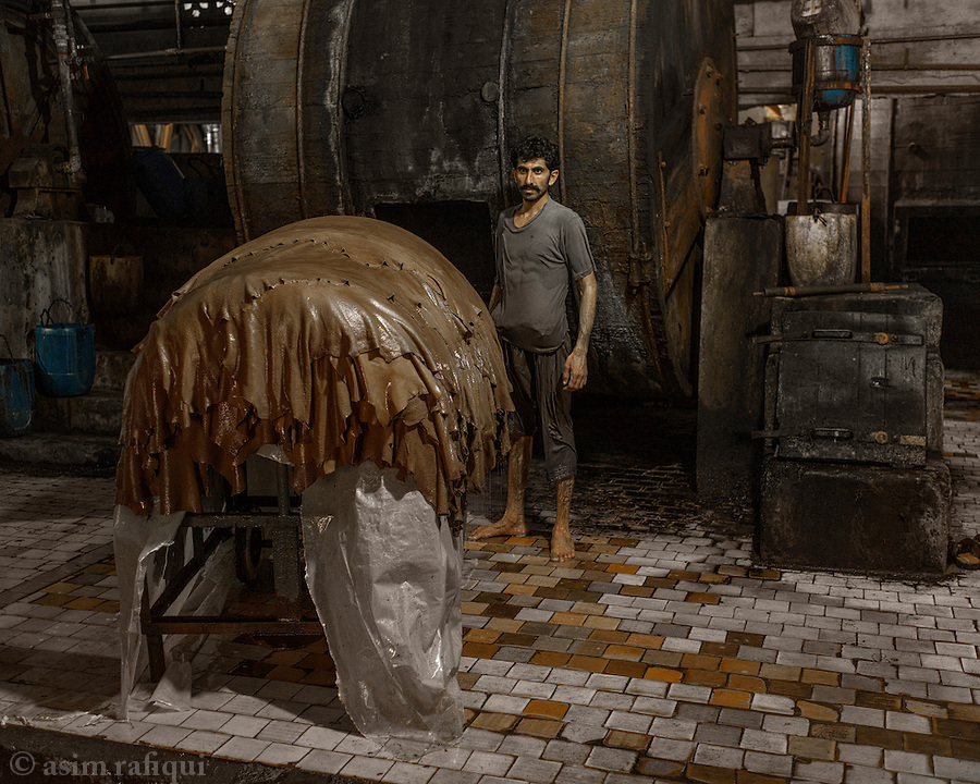 A worker removes sheets of leather skin from dying drums. The leather is immersed in pigment solutions and then rotated for some hours to ensure maximum and consistent color adbsorption. the skins can then be drum dyed, to set a color or finish. The drum dying process involves putting the skins in giant drums along with various chemicals and dyes. A typical skin may go through 4-5 different 40 mintue cycles of dying with different chemicals for a 6 hour total process. Some special finishes can take up to 12 hours of drum dying.