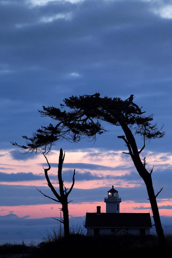 Point Wilson Lighthouse framed by trees, Fort Worden State Park, Port Townsend, Washington, USA