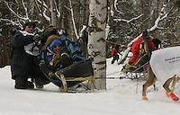 Chad Schouweiler of Tomahawk, Wisconsin hits a tree as he rounds a sharp corner on the Anchorage ski/bike trail during Saturday's ceremnial start in Anchorage.