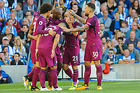 Brighton and Hove Albion v Manchester City 12.08.2017