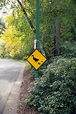 USA, Oregon, Ashland, duck crossing sign in Lithia Park