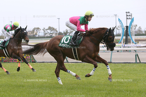 Bom Servico (Kohei Matsuyama),<br /> MARCH 18, 2017 - Horse Racing :<br /> Bom Servico ridden by Kohei Matsuyama before the Chunichi Sports Sho Falcon Stakes at Chukyo Racecourse in Aichi, Japan. (Photo by Eiichi Yamane/AFLO)