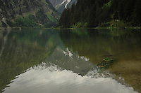 Reflections of mountain and trees, Lake Visalpsee,Tannheim valley, Reutte district , Austria.