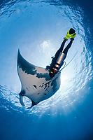 scuba diver and manta ray, Manta birostris, with remora, suckerfish, Remora remora, San Benedicto, Revillagigedo (Socorro) Islands, Mexico, East Pacific Ocean