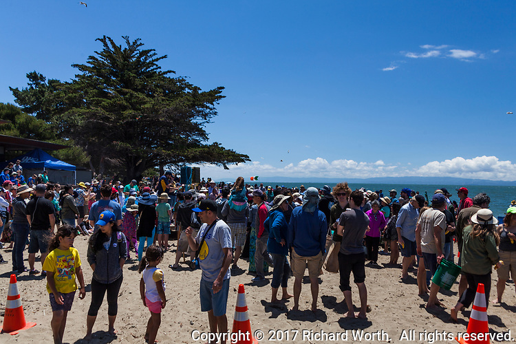 The crowd at the 51st Annual Sand Castle & Sculpture Contest at Crown Beach State Park in Alameda.