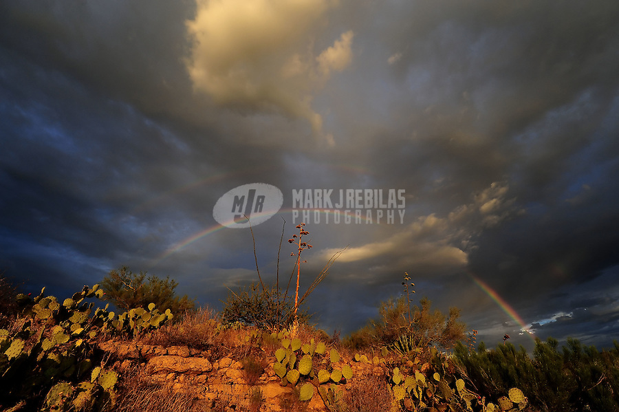 desert double rainbow weather storm chasing chaser rain monsoon storm clouds cactus Arizona mountain mountains brush bushes mountain beaver tail rocks