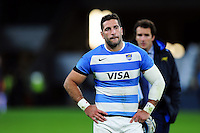 Juan Manuel Leguizamon of Argentina looks dejected after the match. The Rugby Championship match between Argentina and Australia on October 8, 2016 at Twickenham Stadium in London, England. Photo by: Patrick Khachfe / Onside Images