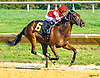 Exotic Appeal winning at Delaware Park on 9/7/16