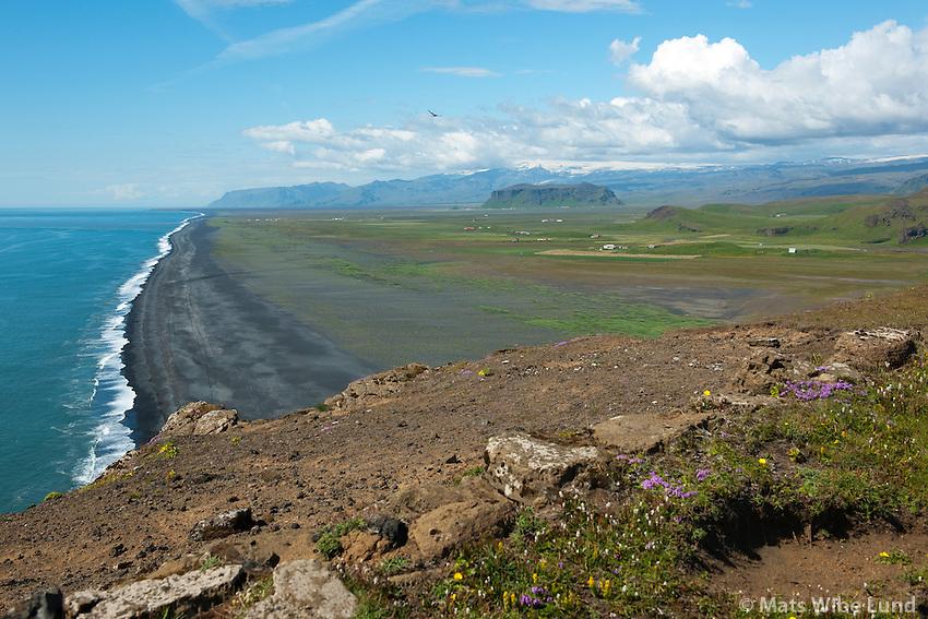 Frá Dyrhólaey séð til vesturs, Garðakot, Vatnsdalshólar. Pétursey og Eyjafjallajökull í bakgrunni, Mýrdalshreppur /  From Dyrholaey - viewing west. Gardakot, Vatnsdalsholar and the small mount Petursey and finally Eyjafjallajokull glacier in background. Myrdalshreppur