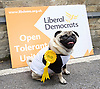 Nick Clegg unveils a new,  poster attacking Theresa May&rsquo;s decision to scrap free school lunches and replace them breakfasts costed at just 7p each. <br /> 31st May 2017 <br /> Geraldine Mary Harmsworth Park, London, Great Britain <br /> <br /> Nelson the Pug.<br /> <br /> Photograph by Elliott Franks <br /> Image licensed to Elliott Franks Photography Services
