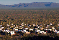 Campers and RVs in the Sonoran desert, lined up in the cactus. Organ Pipe Cactus National Monument, Arizona