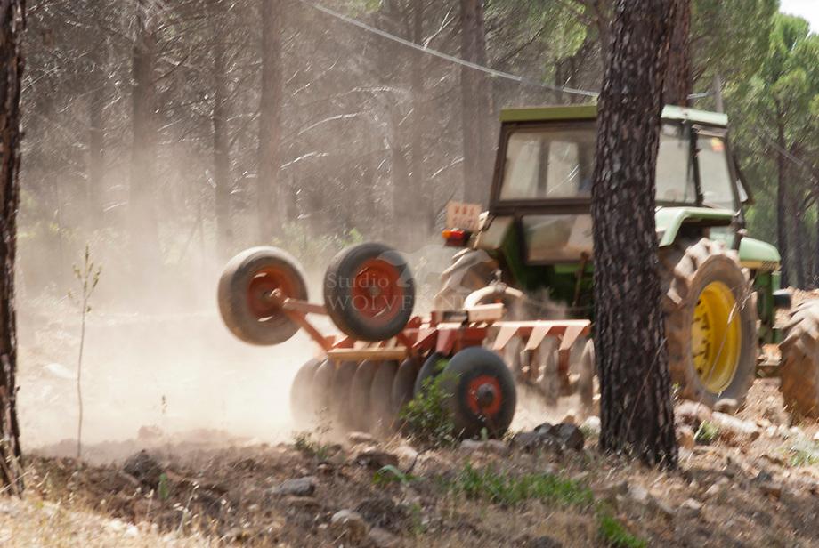 Brandbanen ploegen in spaans bos