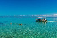 Tour boat, island of Moorea, French Polynesia.