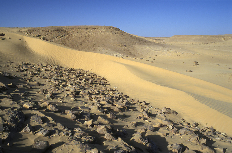 Desert, South Israel