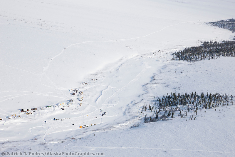 Musher checkpoint of Gold Run during the 2008 All Alaska Sweepstakes sled dog race.