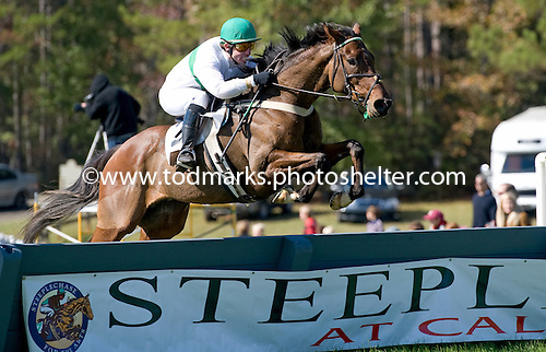 Determined Stand takes the opener at Callaway Gardens, a timber maiden.