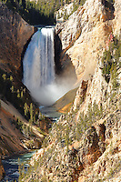 Lower Falls of the Yellowstone River viewed from Artist Point, Grand Canyon of the Yellowstone, Yellowstone National Park, Wyoming, USA
