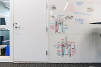 Anatomy drawings on the dry erase walls outside classroom 105 in Johnson Hall, April 18, 2014. (Photo by Marc Campos, Occidental College Photographer)