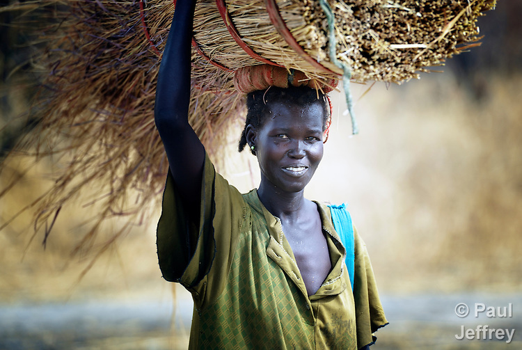 A woman carries grass to use in building a thatched roof on her home in Marail Achak, a village in the disputed Abyei region on the border between Sudan and South Sudan. Residents here have just begun to return, after being chased out in 2011 by soldiers and militias from the northern Republic of Sudan. The northerners withdrew in 2012, but not before leaving the water sources destroyed. The local Catholic parish is helping bring life back to Marail Achak by drilling a new well. Although the 2005 Comprehensive Peace Agreement called for residents of Abyei to hold a referendum on whether they wanted to align with the north or the newly independent South Sudan, the government in Khartoum and northern-backed Misseriya nomads, excluded from voting as they only live part of the year in Abyei, blocked the vote and attacked the majority Dinka Ngok population. The African Union has proposed a new peace plan, including a referendum to be held in October 2013, but it has been rejected by the Misseriya and Khartoum. The Catholic parish of Abyei, with support from Caritas South Sudan and other international church partners, has maintained its pastoral presence among the displaced and assisted them with food, shelter, and other relief supplies. In Marail Achak, residents have begun to return despite the absence of U.N. troop patrols or other international support. Only the church is accompanying the returnees.