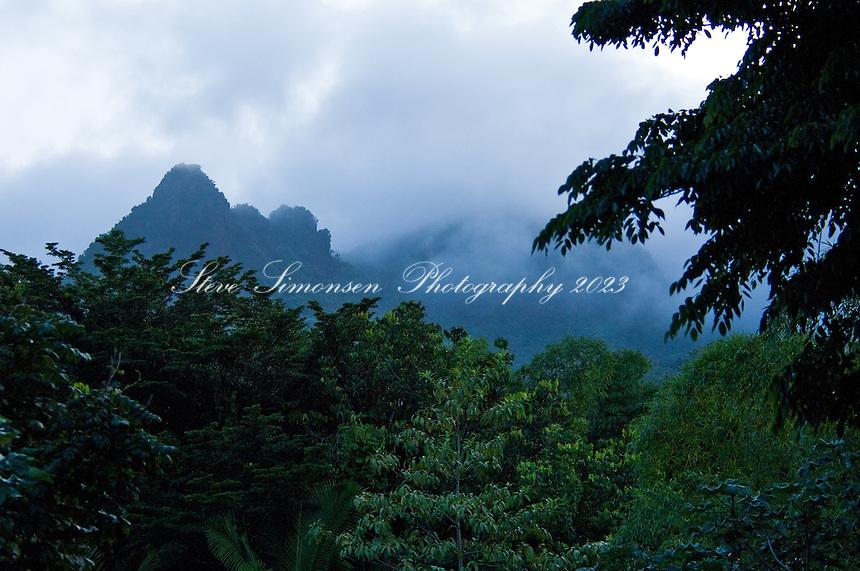 Puerto Rico, El Yunque National Rain Forest