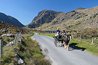 Ireland, County Kerry, near Killarney, horse-drawn carriage at Gap of Dunloe | Irland, County Kerry, bei Killarney, Pferdekutsche am Gap of Dunloe