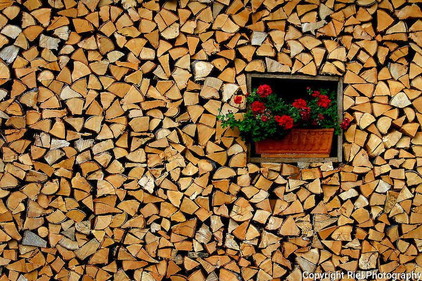 Most of the cottages in the mountains of Slovenia have ample supplies of wood stacked against their outer walls for winter. This flower box added a bit of whimsy.