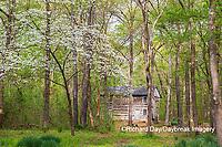 63895-15820 Cabin at Log Cabin Village in spring Kinmundy IL