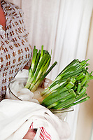 Bunches of spring onions are kept fresh by being immersed in a bowl of ice cubes