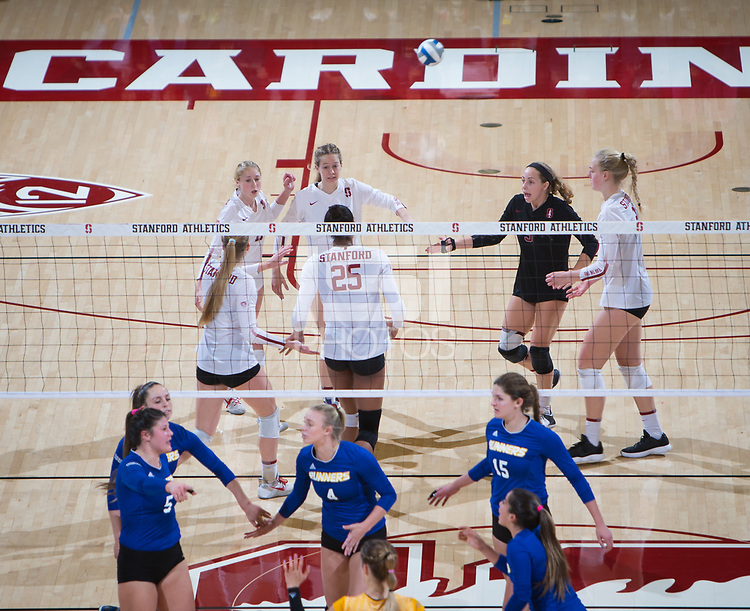 STANFORD, CA - December 1, 2017: Kate Formico, Meghan McClure, Jenna Gray, Courtney Bowen, Morgan Hentz, Kathryn Plummer at Maples Pavilion. The Stanford Cardinal defeated the CSU Bakersfield Roadrunners 3-0 in the first round of the NCAA tournament.