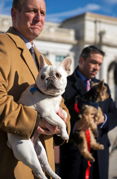 UNITED STATES - NOVEMBER 20: Rep. Jeff Denham, R-Calif., left, with his dog Lily, and Rep. Michael Grimm, R-N.Y., with his dog Sebastian, attend an event outside of Union Station to support the Pets on Trains Act which would urge Amtrak to allow passengers to travel with pets on trains. (Photo By Tom Williams/CQ Roll Call)