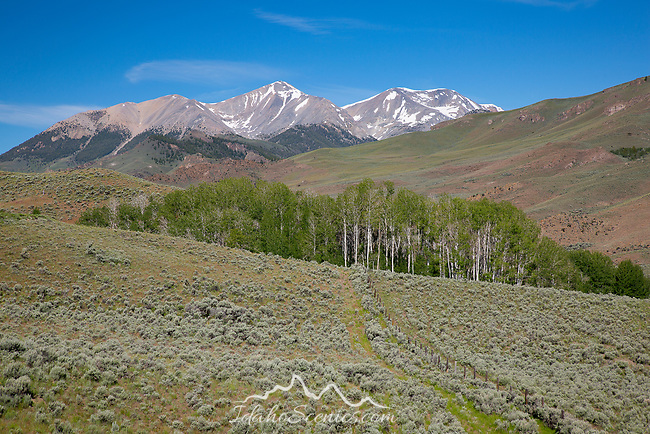 Idaho, South Central, Custer County, Mackay.  The White Knob Mountains in late spring.