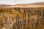 Old ranch corral fence in southern Oregon.