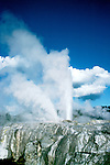 New Zealand: Rotorua geothermal, Whakarewarewa,  Photo: nzauk103.Photo copyright Lee Foster, www.fostertravel.com, 510/549-2202, lee@fostertravel.com